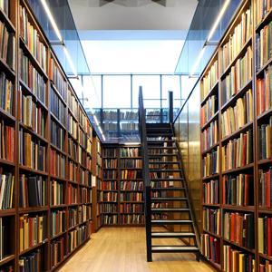 Библиотеки Еманжелинска