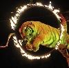 Цирки в Еманжелинске